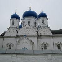 ►Боголюбово. Боголюбский монастырь. Боголюбский Собор (северный фасад), Боголюбово