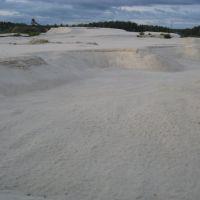 Белое озеро и белый песок, Великодворский