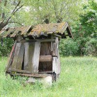 Заброшенный колодец, Вербовский