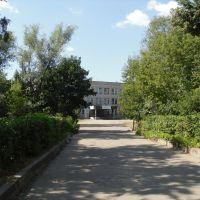Дорога к школе №2, Вербовский