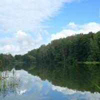 Нижний пруд, Вербовский