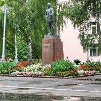 Памятник Ленину, Вербовский