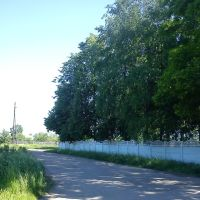 тихая улица, Вязники
