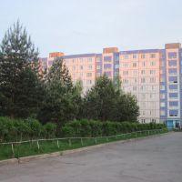 мк. Ефимьево, Вязники