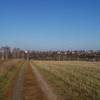 осень 2010, Вязники