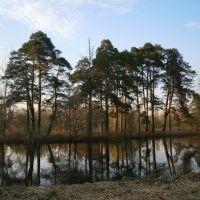 Троицкое озеро (автор Алина), Городищи