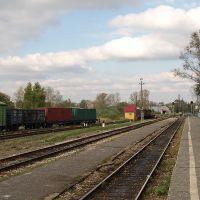 Gus-Khrustalniy station, Гусь Хрустальный