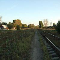 Железная дорога около 2го речного в сторону вокзала, Гусь Хрустальный