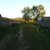 1ый речной пер. к речке, Гусь Хрустальный