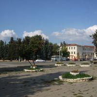 центр города - пересечение улиц Интернациональная и Калинина, Гусь Хрустальный