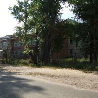 школа 15, Гусь Хрустальный