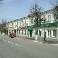 На улицах Гусь-Хрустального, Гусь Хрустальный