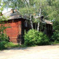 Совсем старый домик, Гусь Хрустальный