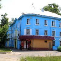 Весёлый домик, Гусь Хрустальный