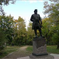памятник Акиму Мальцову, Гусь Хрустальный
