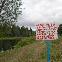 правила вылова водных биоресурсов, Золотково
