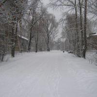 ул. Ломоносова, Золотково