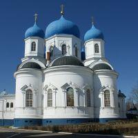 Боголюбовский собор, Иванищи