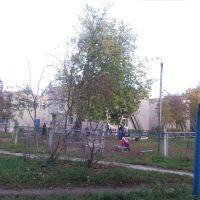 """д/с №8 """"Солнышко"""", Камешково"""