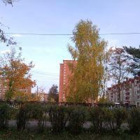ул.Совхозная, Камешково