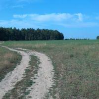 Полевая грунтовка, Карабаново
