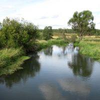 Река Серая, Карабаново