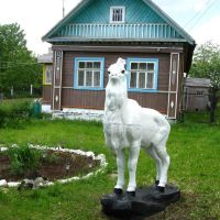 Козёл в огороде, Карабаново