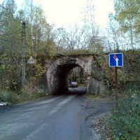 Старая арка, Карабаново