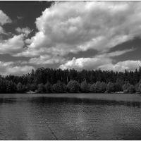 Зарыбленный пруд, Киржач