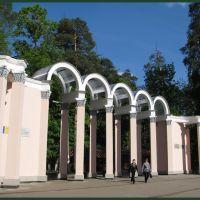 Ковров. Вход в парк им.Дегтярева., Ковров