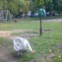 Чудеса творчества (лебедь и пальма из автошин)., Кольчугино