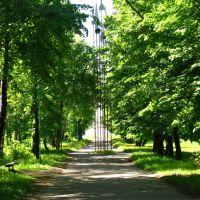Хорохоновский Проспект В Городе Меленки (Horohonovsky Avenue In The Melenki), Меленки