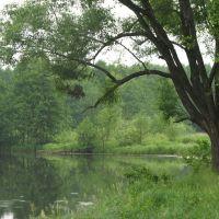 Речка Унжа (Unzha River), Меленки