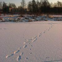 Следы (Footsteps), Меленки