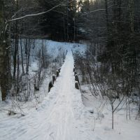 Мосток в лесу, Петушки