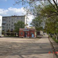 Маяковского, Дом Быта и Аистёнок, Петушки