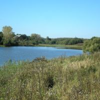 Плотина на Березке, Петушки
