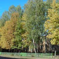 Улица III Интернационала (г. Покров Владимирской области), Покров