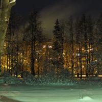 Во дворе педагогического колледжа, Покров
