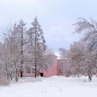 Дворик колледжа зимой, Покров