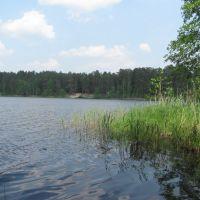 озеро Черное, Покров