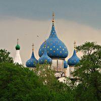 Suzdal. Nativity of the Virgin Cathedral. Собор Рождества Пресвятой Богородицы. UNESCO World Heritage site, Суздаль