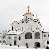 Pokrovskiy sobor on rare sunny winter day, Суздаль