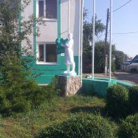 Колхозница с качаном капусты, Алексеевская