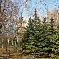 В парке городском., Алущевск