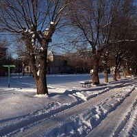 Мороз и солнце. часть 2., Волжский