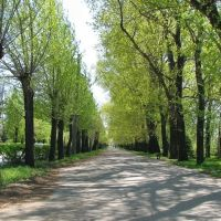 Набережная / Avenue, Волжский
