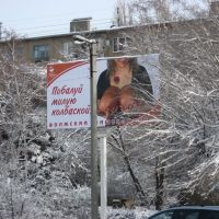 Площадь Карбышева, Волжский. Indulge cute sausage!, Волжский