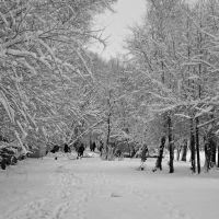 Зимняя тропинка., Волжский