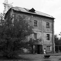 Старая мельница. The Old Mill., Волжский